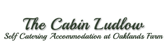 The Cabin Ludlow