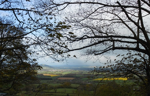 View from Knowbury